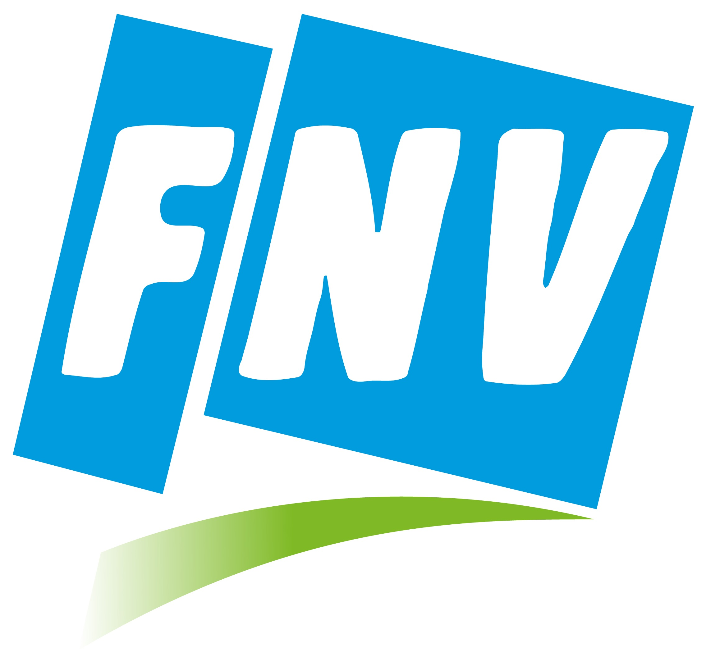 FNV LOGO FLASH